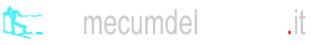 vademecumdelfondista.com